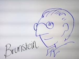 Luis Brunstein